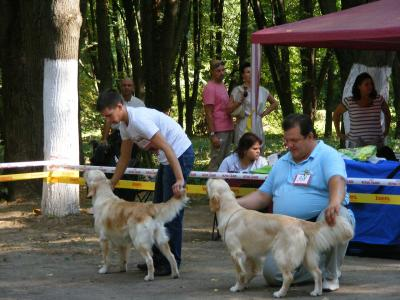 "Ukraine, Uzhgorod, International Show CACIB ""Pearl of Carpathy"""