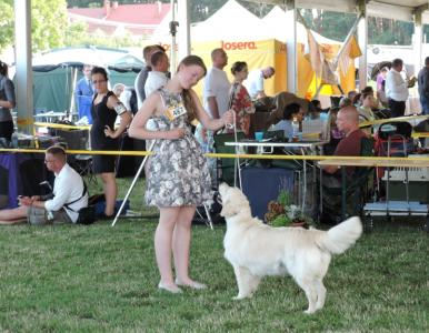 International Dog Show, Sombathely, Hungary
