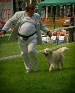 "X National Club Show ""Golden Retriever"""