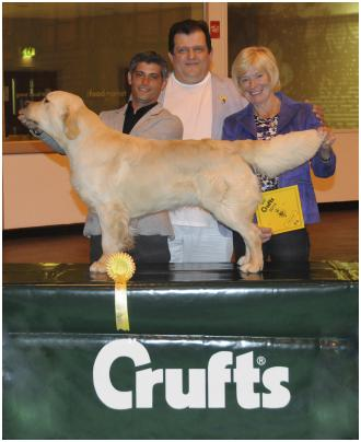 Third place - Crufts-2014